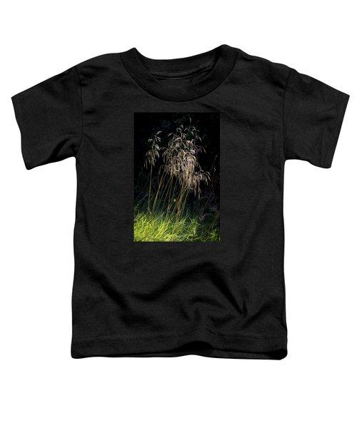 Sunlit Grasses. Toddler T-Shirt
