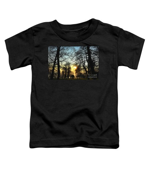 Trees And Sun In A Foggy Day Toddler T-Shirt
