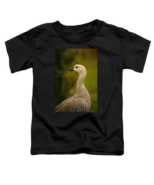 Upland Goose Portrait Toddler T-Shirt