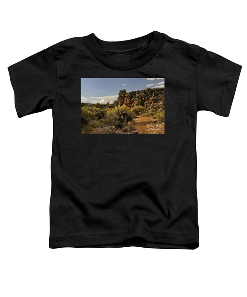 Westward Across The Mesa Toddler T-Shirt