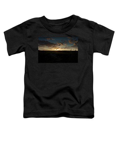 Wheat Fields  Toddler T-Shirt