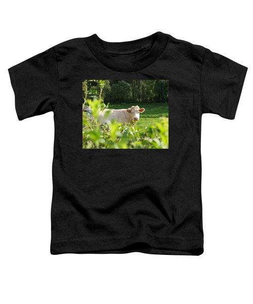 White Cow Toddler T-Shirt