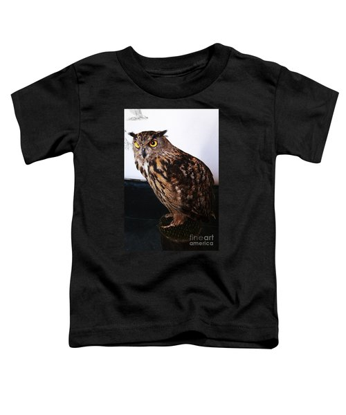 Yellow-eyed Owl Side Toddler T-Shirt