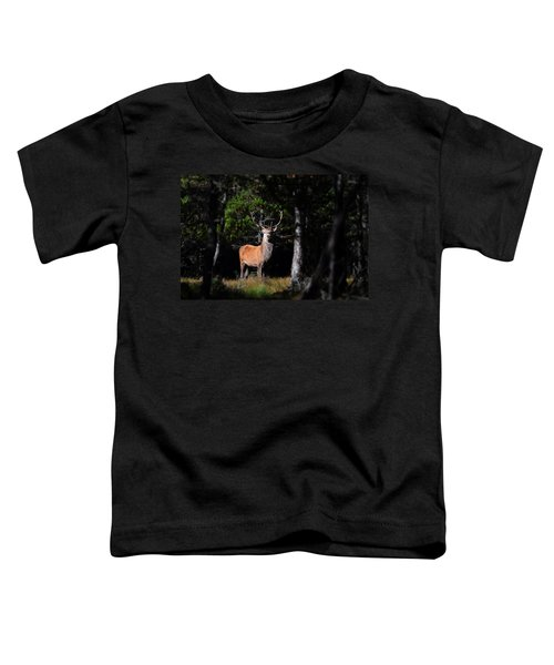 Stag In The Forest Toddler T-Shirt