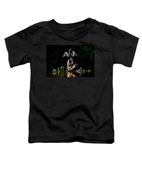 Anhinga Anhinga Anhinga, Pantanal Toddler T-Shirt