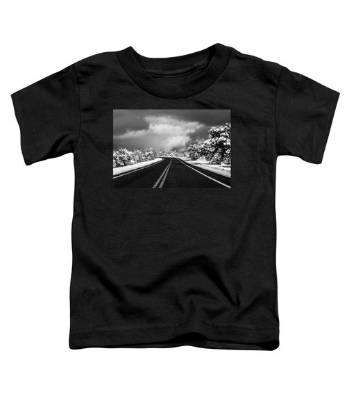 Arizona Snow Toddler T-Shirt