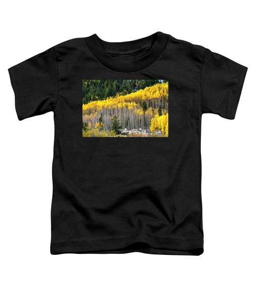 Aspen Trees In Fall Color Toddler T-Shirt