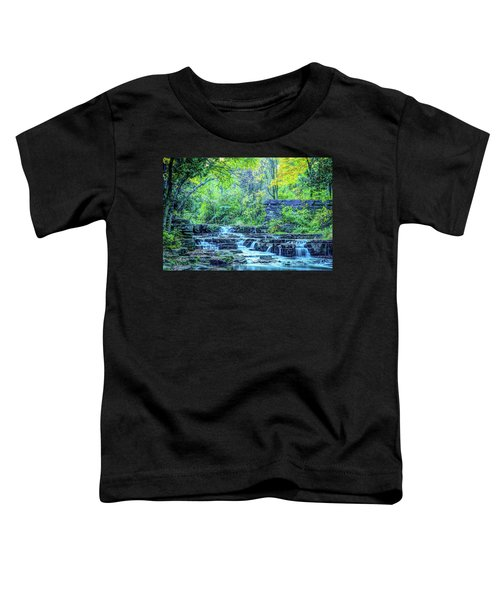 Devils River 2 Toddler T-Shirt