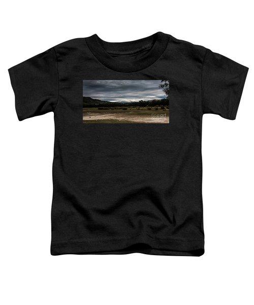 Etna, The West Side Toddler T-Shirt