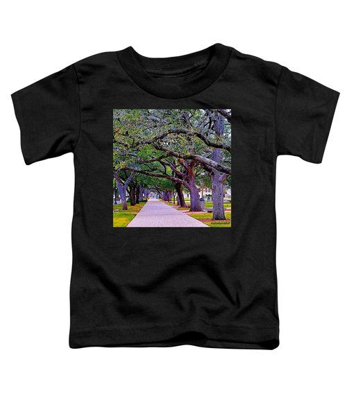Happy Sunday! May The #path You Take Toddler T-Shirt