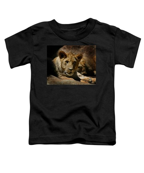 Lion Cub Toddler T-Shirt