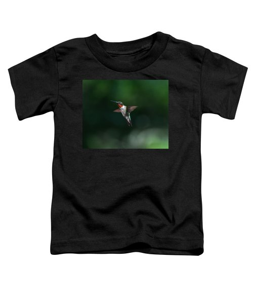 Male Ruby Throated Hummingbird Toddler T-Shirt