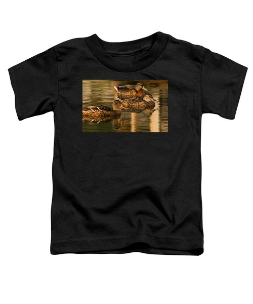 Mallards Swimming In The Water At Magic Hour Toddler T-Shirt