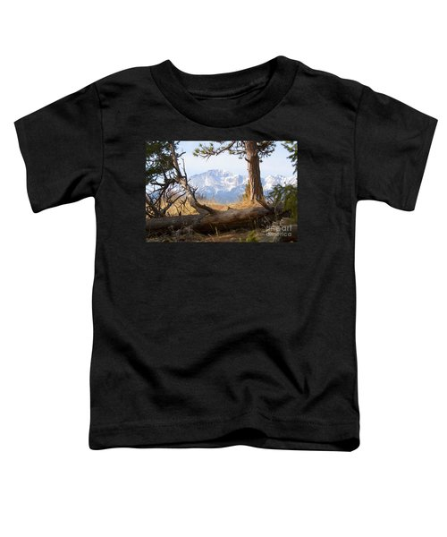 Pikes Peak And Trail To Bald Mountain Toddler T-Shirt