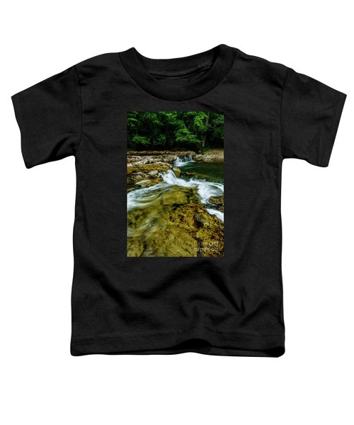 Whitaker Falls In Summer Toddler T-Shirt