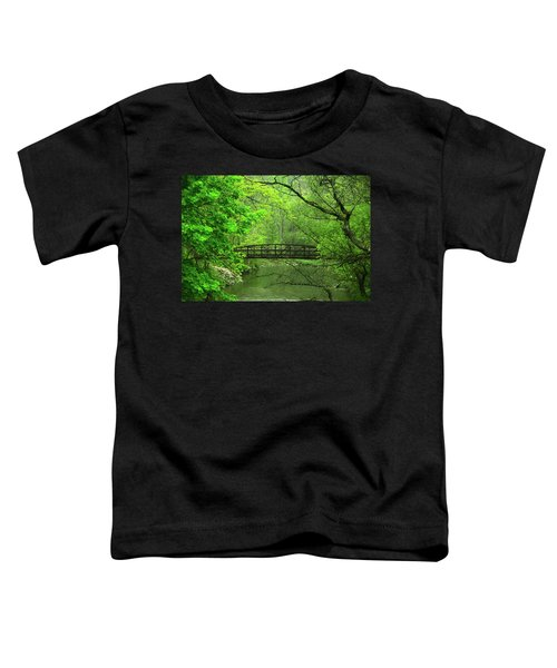 Jacobsburg State Park Pa Toddler T-Shirt