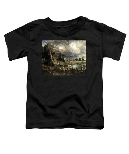 Salisbury Cathedral From The Meadows Toddler T-Shirt