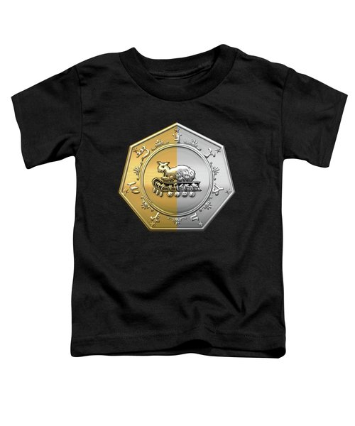 17th Degree Mason - Knight Of The East And West Masonic Jewel  Toddler T-Shirt by Serge Averbukh