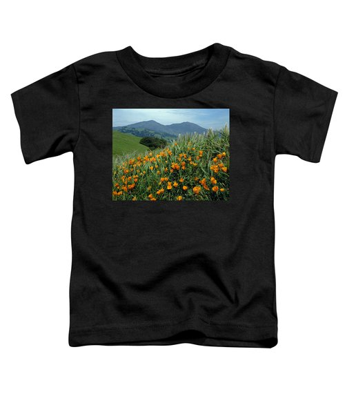 1a6493 Mt. Diablo And Poppies Toddler T-Shirt