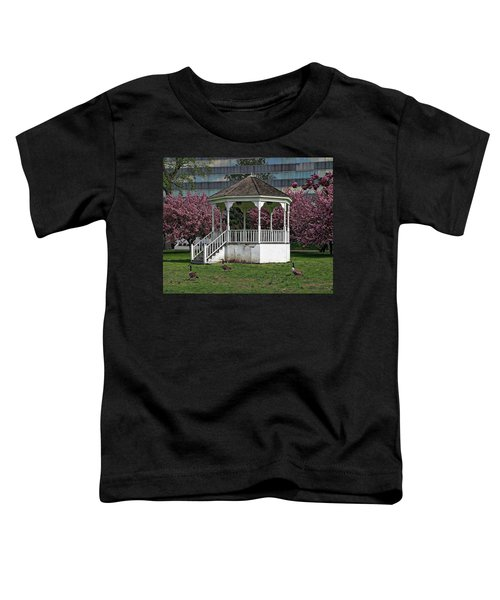 Gazebo In The Park Toddler T-Shirt