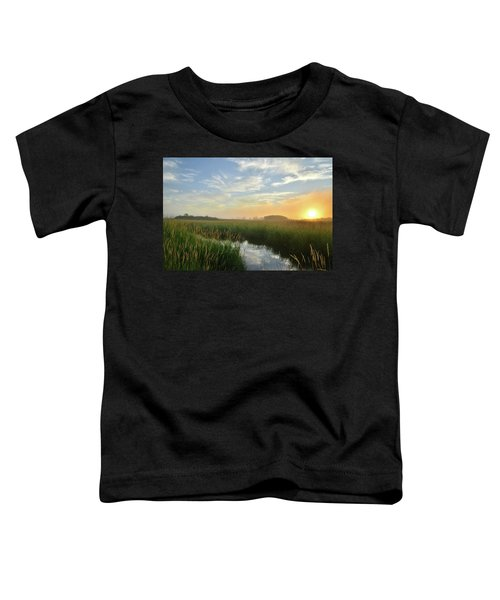 Sunrise At Glacial Park Toddler T-Shirt