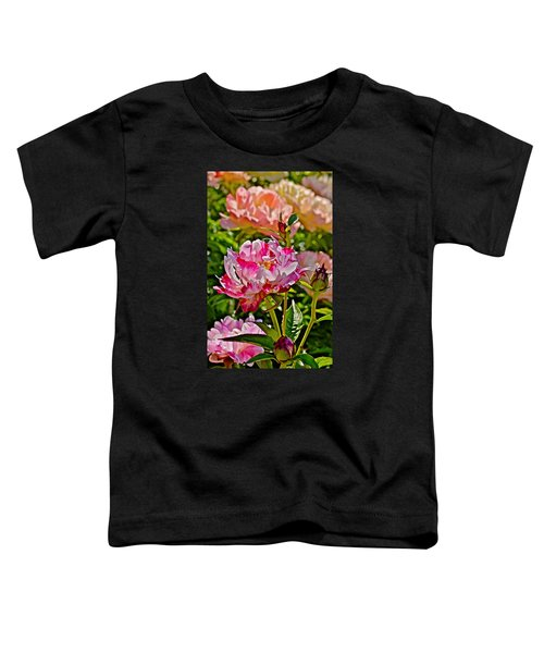 2015 Summer's Eve At The Garden Candy Stripe Peony Toddler T-Shirt