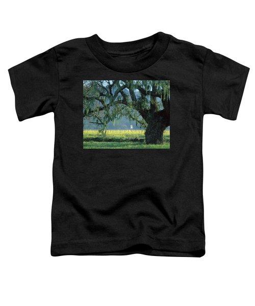 2b6319 Mustard In The Oaks Sonoma Ca Toddler T-Shirt