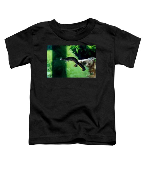 Alpine Newt Triturus Alpestris Toddler T-Shirt by Gerard Lacz