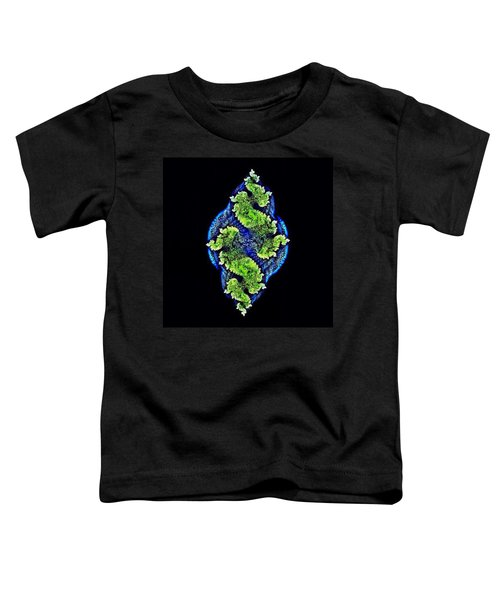 Tautological Fractals Toddler T-Shirt