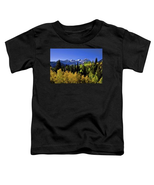 Autumn Splender Toddler T-Shirt