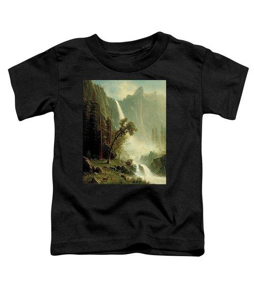 Bridal Veil Falls Toddler T-Shirt