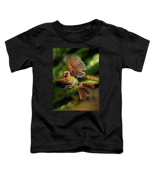 A Cardinal Approaches Toddler T-Shirt