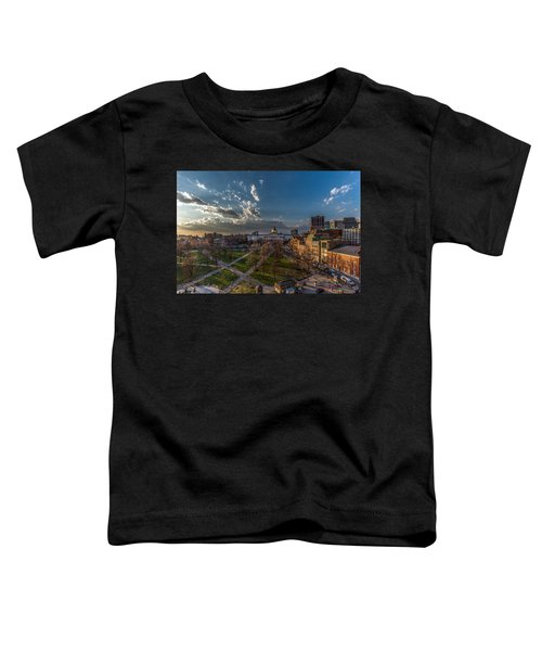 A Common Sunset Toddler T-Shirt