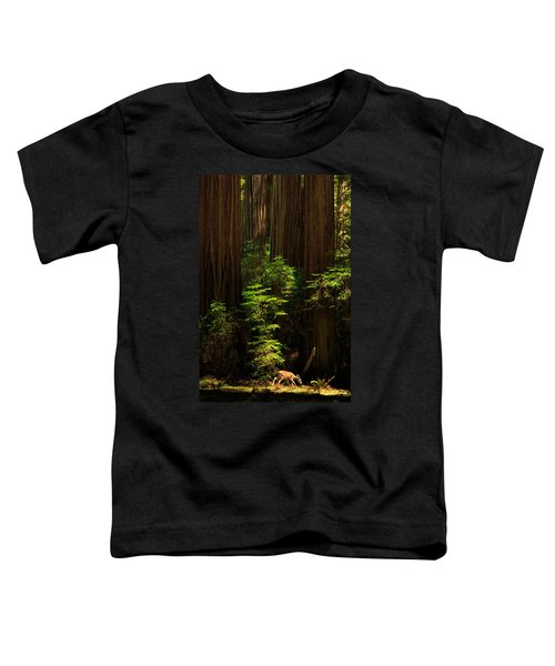 A Deer In The Redwoods Toddler T-Shirt