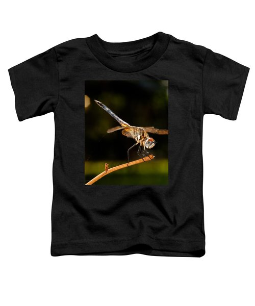 A Dragonfly Toddler T-Shirt