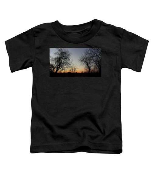 A New Day Dawning Toddler T-Shirt