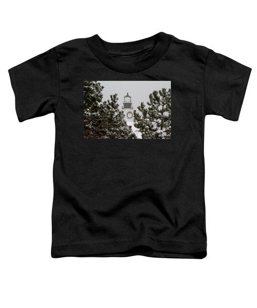 A View Of The Portland Head Light Toddler T-Shirt