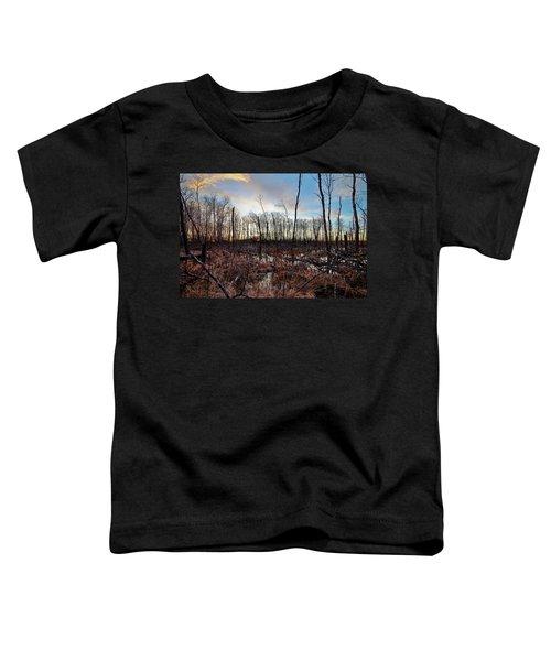 A Wet Decay Toddler T-Shirt