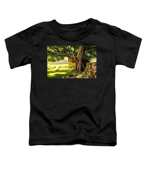Abandoned Ruins Toddler T-Shirt
