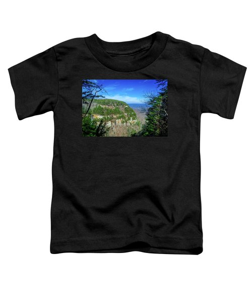 Above The Canyon Toddler T-Shirt