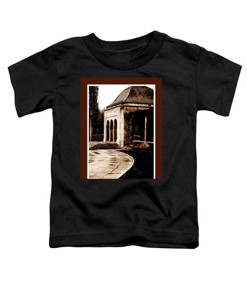 Aged By Time Toddler T-Shirt