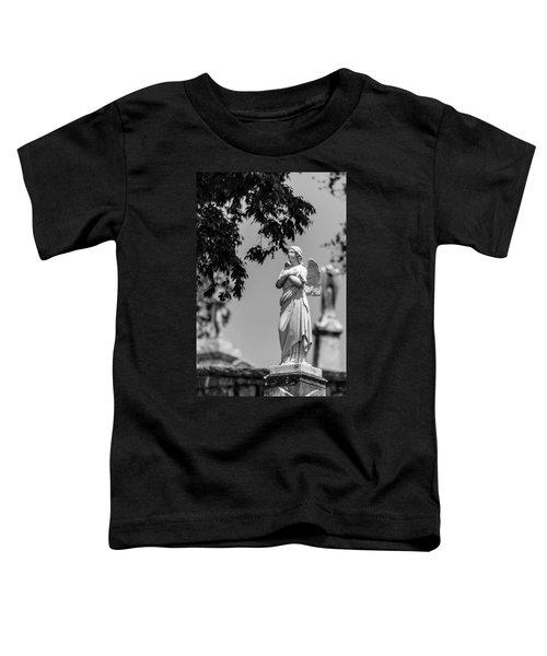 Aggelos Toddler T-Shirt