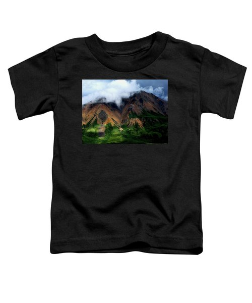 Alaskan Grandeur Toddler T-Shirt