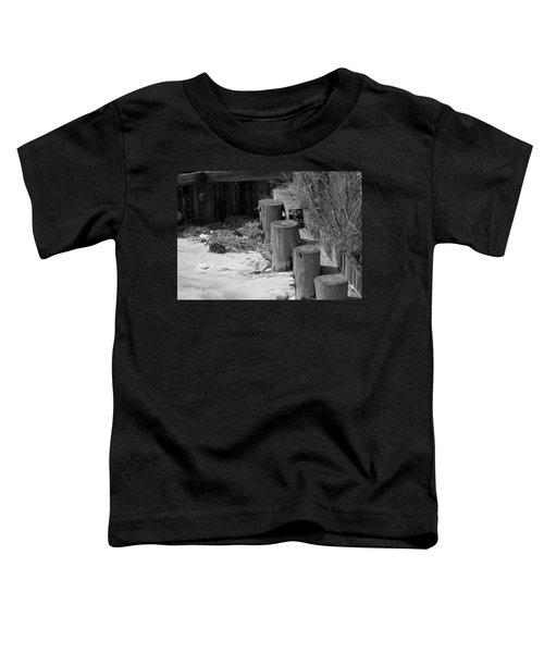 Along The Shore Toddler T-Shirt