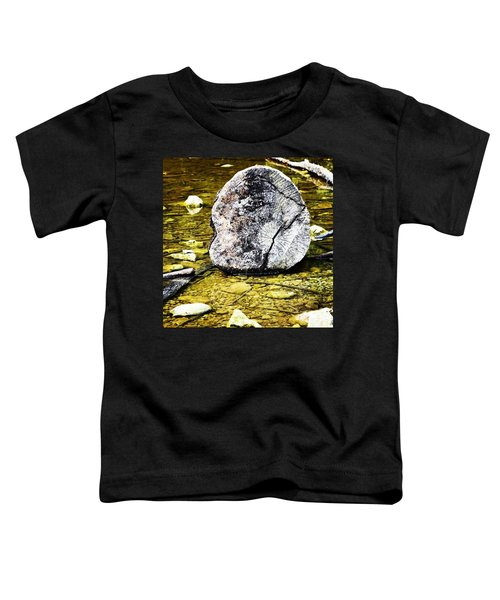 An Exposed Tree Stump In A Drying Up Toddler T-Shirt
