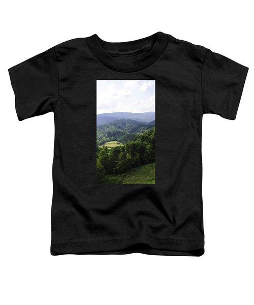 An Old Shack Hidden Away In The Blue Ridge Mountains Toddler T-Shirt