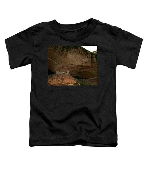 Anasazi Indian Ruin Toddler T-Shirt
