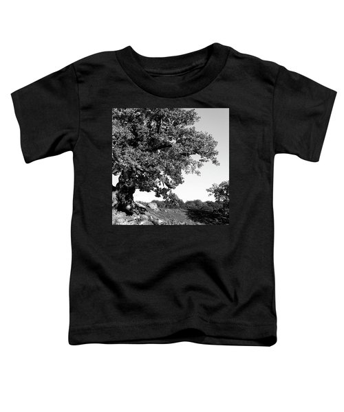 Ancient Oak, Bradgate Park Toddler T-Shirt