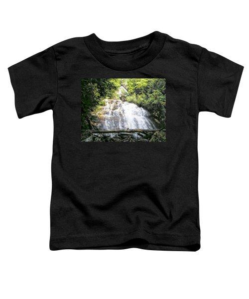Anna Ruby Falls Toddler T-Shirt