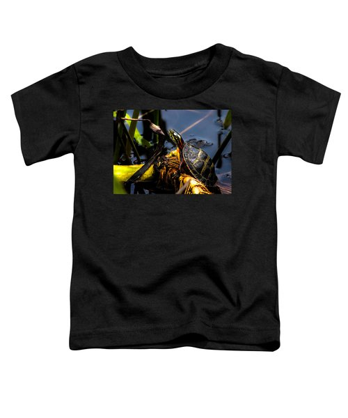 Ant Meets Turtle Toddler T-Shirt